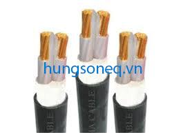Cáp ngầm Trần Phú 2x95 mm2 CU/XLPE/PVC/DSTA/PVC 0,61KV